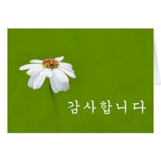Cartão Obrigado no coreano - margarida branca