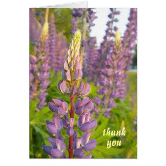 Cartão Obrigado que do Lupine você nota