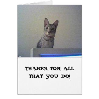 Cartão Obrigados para tudo que você faz!