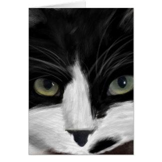 Cartão observação do gato
