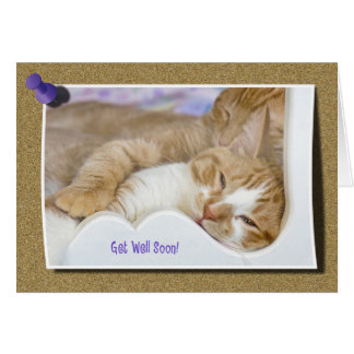 Cartão Obtenha logo o gato malhado bom
