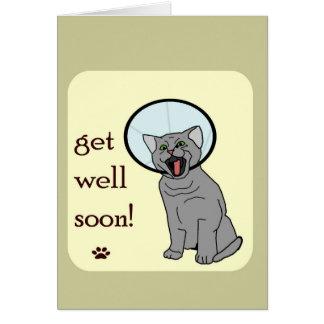 Cartão Obtenha o gato do poço logo | com cone