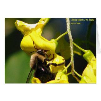 Cartão Ocupado como uma abelha