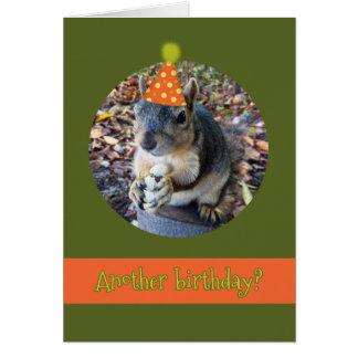 Cartão Oh, loucos!  Um outro aniversário com esquilo