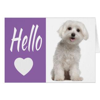 Cartão Olá! cão de filhote de cachorro maltês branco