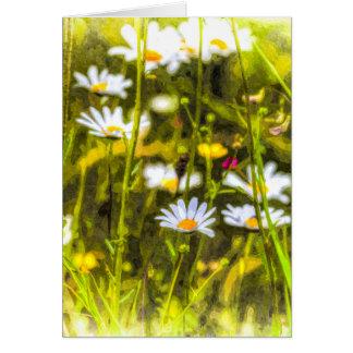 Cartão Óleo da camomila