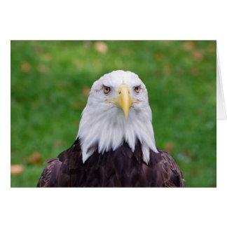 Cartão Olhos de Eagle