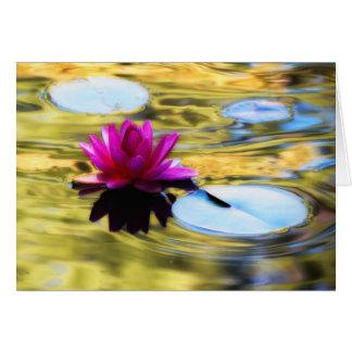 Cartão Ondinhas do lírio - lírio de água