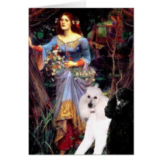 Cartão Ophelia (madeiras) - 2 caniches padrão