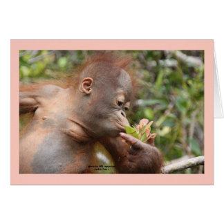 Cartão Orangotango infantil com flor tropical