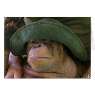 Cartão Orangotango no chapéu do exército