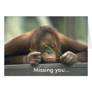 Cartão Orangotango triste que falta o