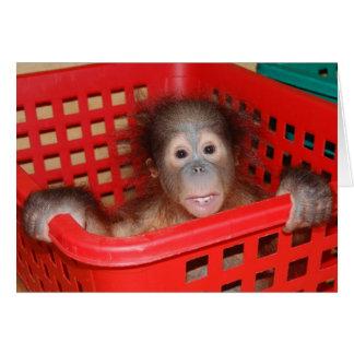 Cartão Órfão do orangotango do bebê