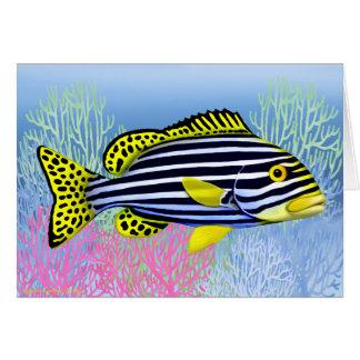 Cartão oriental dos peixes do recife de Sweetlips