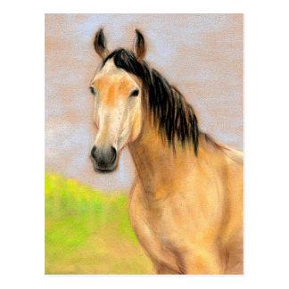 Cartão original da arte do cavalo de Bucksin