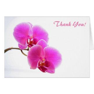 Cartão Orquídea cor-de-rosa do Phalaenopsis