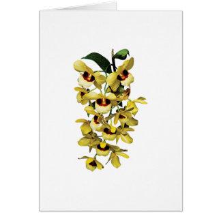 Cartão Orquídeas amarelas da cascata