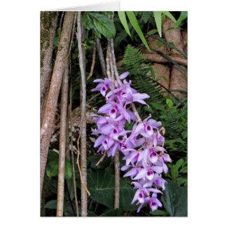 Cartão Orquídeas havaianas de Honohono