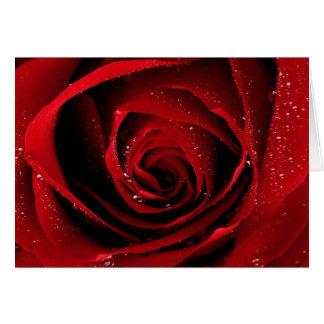 Cartão Orvalho floral das flores das pétalas cor-de-rosa