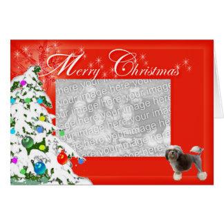 Cartão Os desejos de Lowchen Chrismas adicionam sua foto