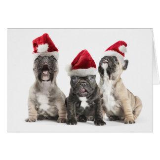 Cartão Os filhotes de cachorro do buldogue francês cantam