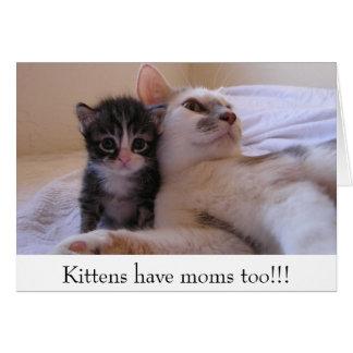 Cartão Os gatinhos têm mães demasiado!!!