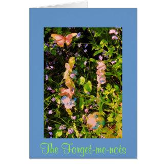 Cartão Os miosótis