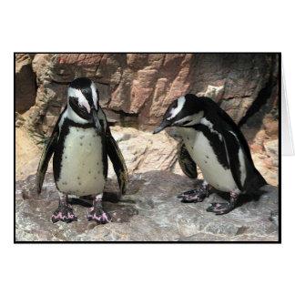 Cartão Os pinguins agradecem-lhe