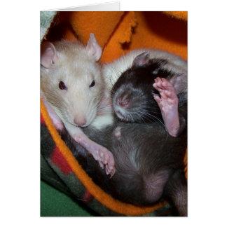 Cartão Os ratos são bons para travesseiros