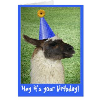 Cartão ou convite engraçado de aniversário do lama
