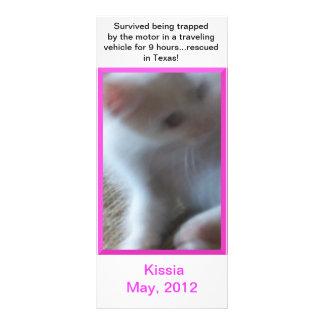 Cartão ou marcador da cremalheira de Kissia