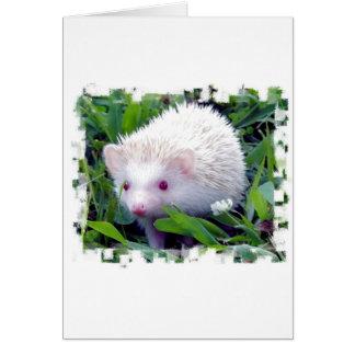 Cartão Ouriço na grama