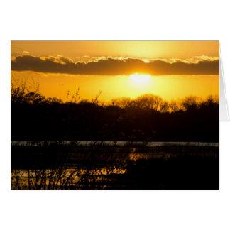 Cartão Ouro do pantanal