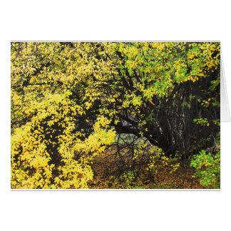Cartão Outono da árvore de Apple