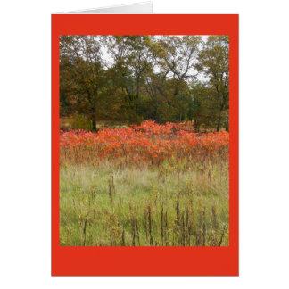 Cartão Outono Sumac Notecard vazio