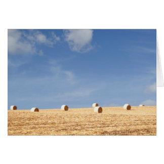 Cartão Pacotes de feno no campo
