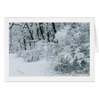 Cartão País das maravilhas do inverno - folha