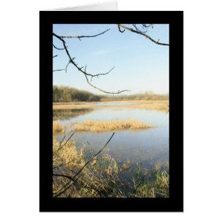 Cartão País das maravilhas do pantanal