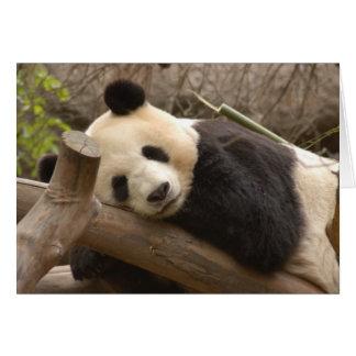 Cartão Panda SD010