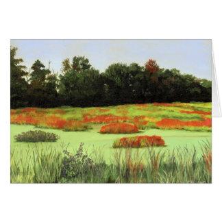 Cartão Pantanais coloridos