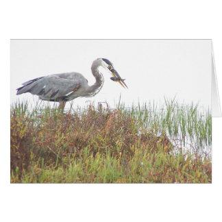 Cartão Pantanais dos animais dos animais selvagens do