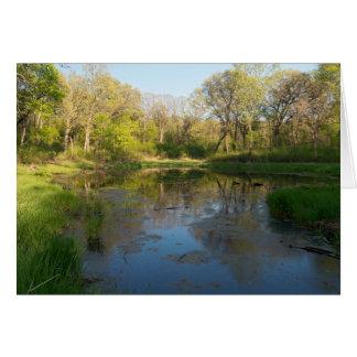 Cartão Pântanos do parque de Battle Creek