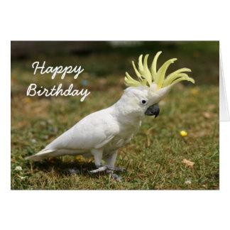 Cartão Papagaio de cockatoo com crista do enxofre do