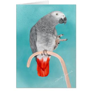 Cartão Papagaio do cinza africano