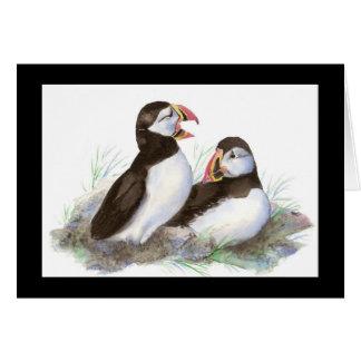 Cartão Papagaio-do-mar bonitos da aguarela, pássaros