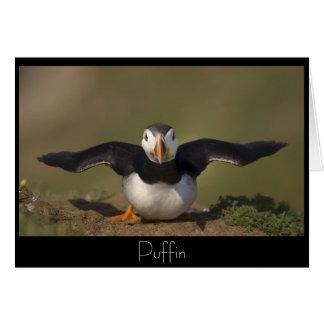 Cartão Papagaio-do-mar do Flapping