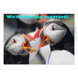 Cartão Papagaio-do-mar que atlânticos nós nos estamos