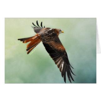 Cartão Papagaio vermelho em vôo
