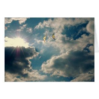 Cartão Papagaios de Sun