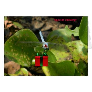 Cartão Papai noel da libélula